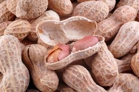 peanuts can cause an allergic skin rash