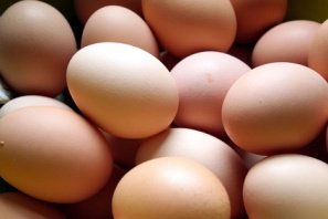 eggs used for a facial mask